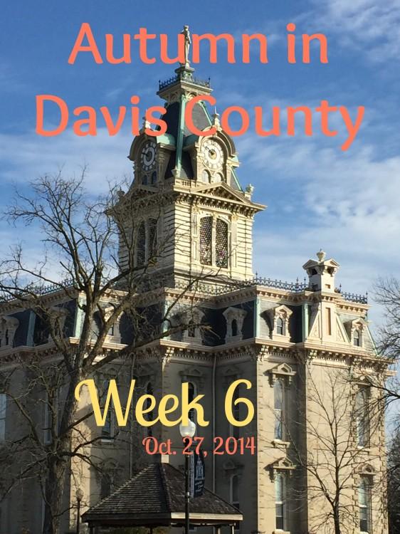 DCT Autumn Week 6